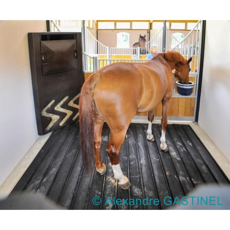 tapis box chevaux par faulocam pres de bergerac